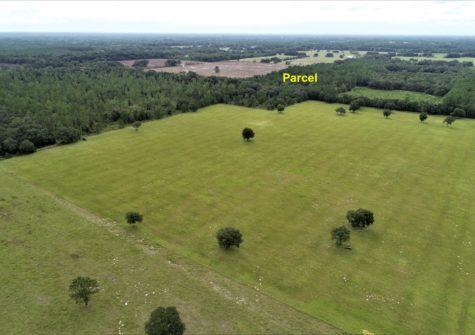 Cheap 10 Acres Land In Williston, FL
